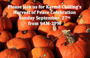 Harvest of Peace 2015